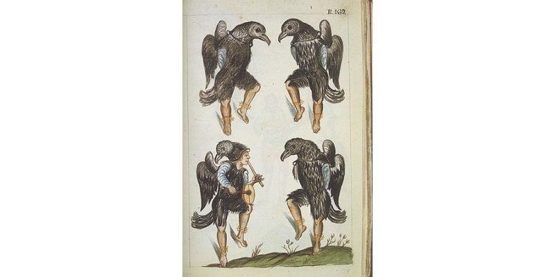Trujillo_Crows